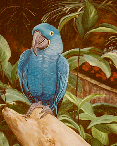 Blue Parrot Painting